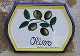 Olivo mattonella small